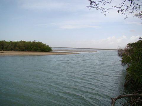 Boca de Caño: Refugio de vida y espacio para el turismo natural en Falcón