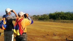 Minea reporta por primera vez anidación de tijereta de mar en Nueva Esparta