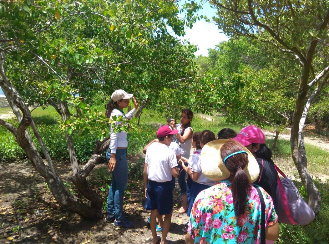 Trabajadores de Inparques Falcón imparten talleres para la conservación de manglares