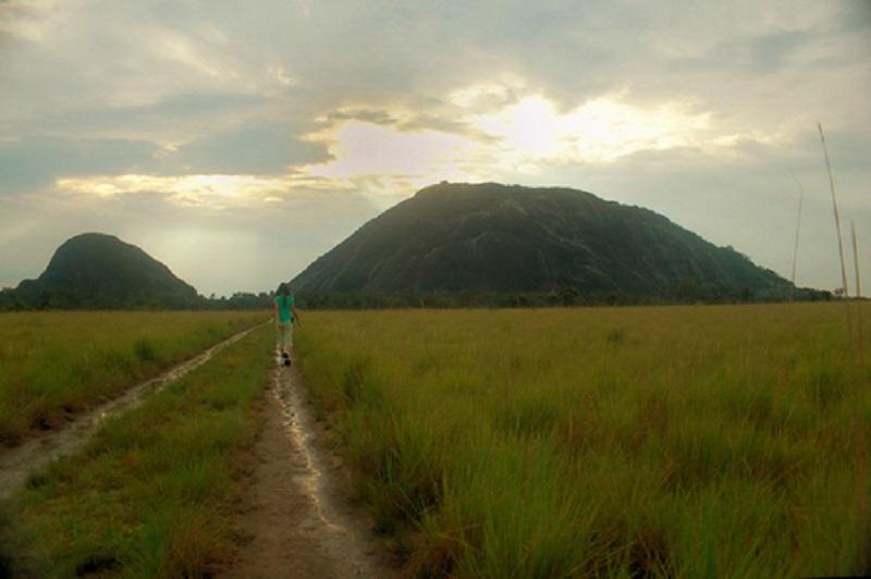 Resultado de imagen para monumentos naturales en estado amazonas piedra la tortuga