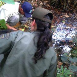 En Mérida detectan tomas clandestinas en afluentes del Monumento Laguna de Urao