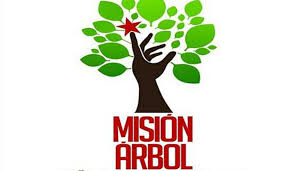 Misión Árbol impulsa reforestación de cuencas hidrológicas de Vargas