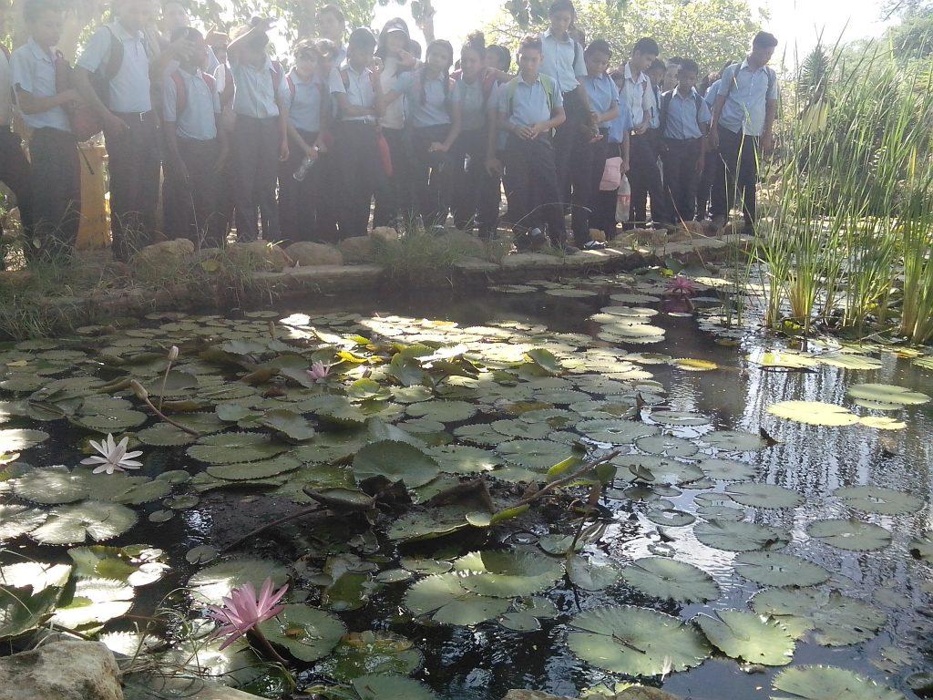 Estudiantes realizan recorrido de interpretación ecológica en Jardín Botánico Xerófito de Coro
