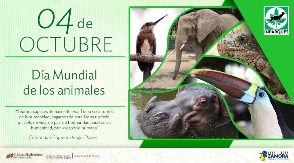 El Día de los Animales celebra la vida en todas sus formas