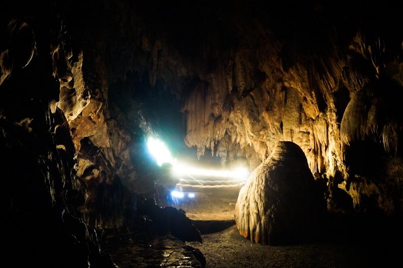 Cueva del Guácharo: esconde un mundo ecológico