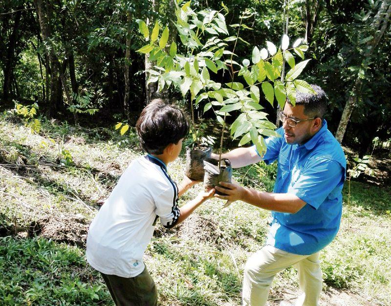 Voluntarios plantan nogales en el Waraira
