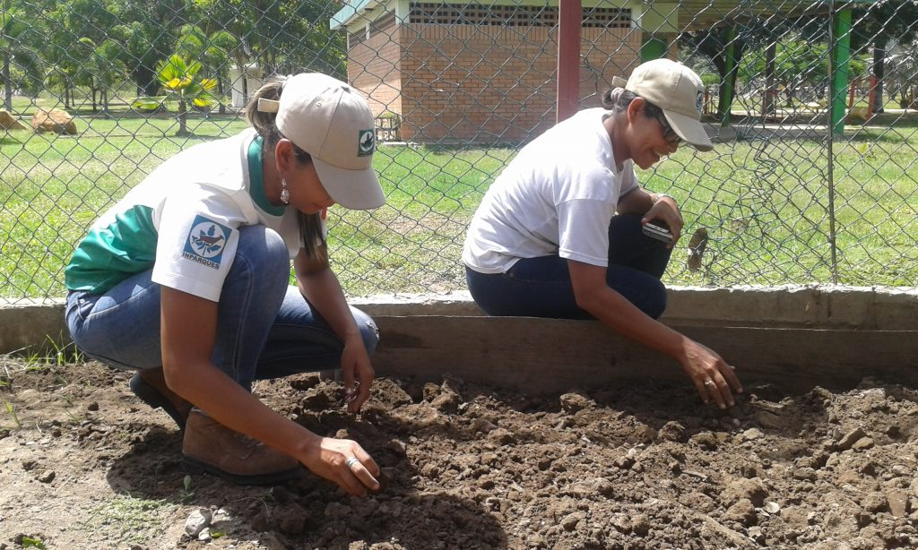 Inparques efectúa mantenimiento al vivero institucional en Anzoátegui