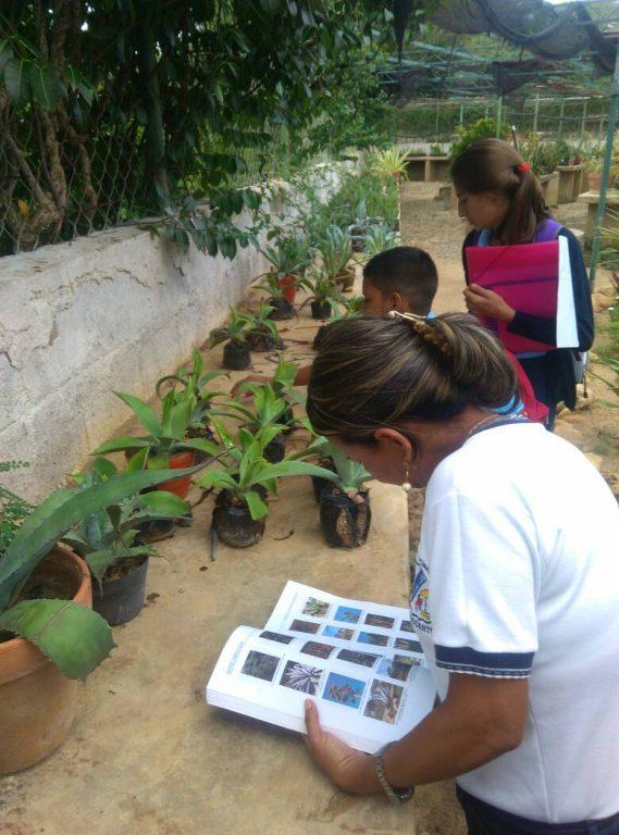 Inicia actualización de inventario de especies del Jardín Botánico Xerófito de Coro