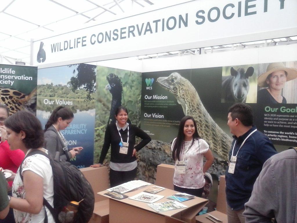 Inparques expondrá investigación sobre oso andino en conferencia  Internacional en Ecuador