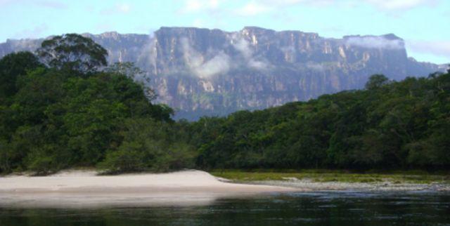 Venezuela en el Día Mundial de la Ecología reafirma su compromiso con la preservación ambiental