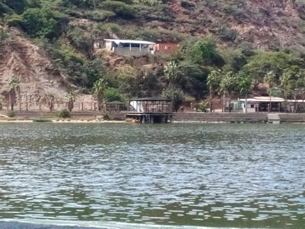 Inparques Mérida sembró más de 90 árboles en el Monumento Laguna de Urao