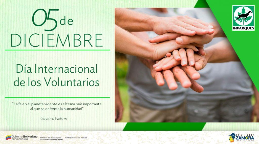 Día Internacional de los Voluntarios: compromiso y conciencia en una sociedad
