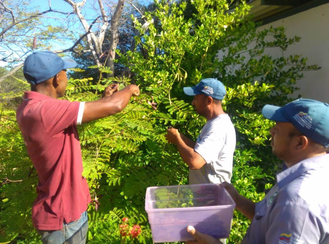 Actividades ecológicas y formativas se llevan a cabo en Inparques Falcón