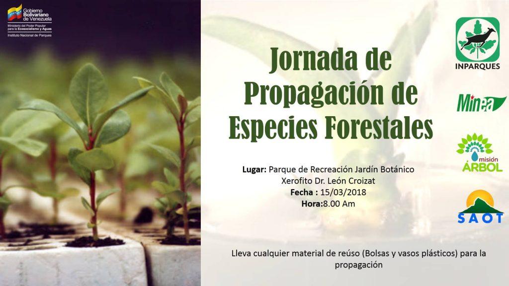 Realizarán jornada de propagación de especies forestales en Jardín Botánico de Coro