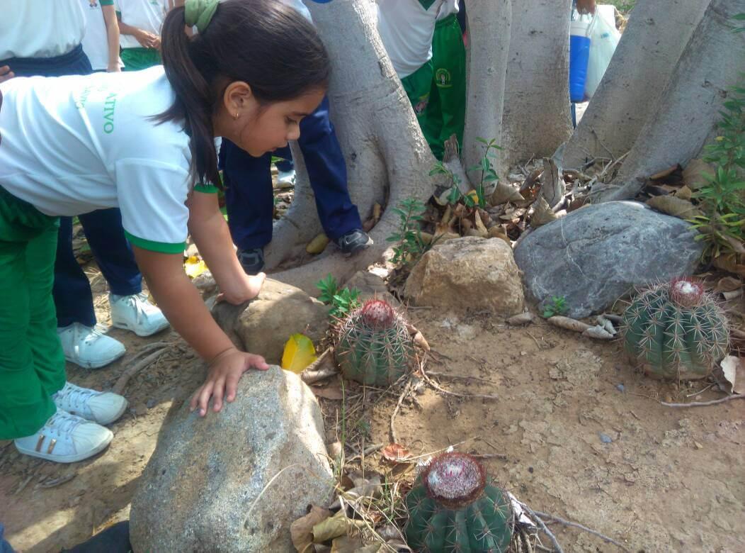 Estudiantes de Coro culminan proyecto educativo en el Jardín Botánico Xerófito