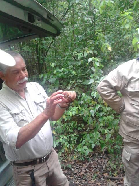 Servidores Públicos de Morrocoy realizaron taller de estudio y conservación de murciélagos