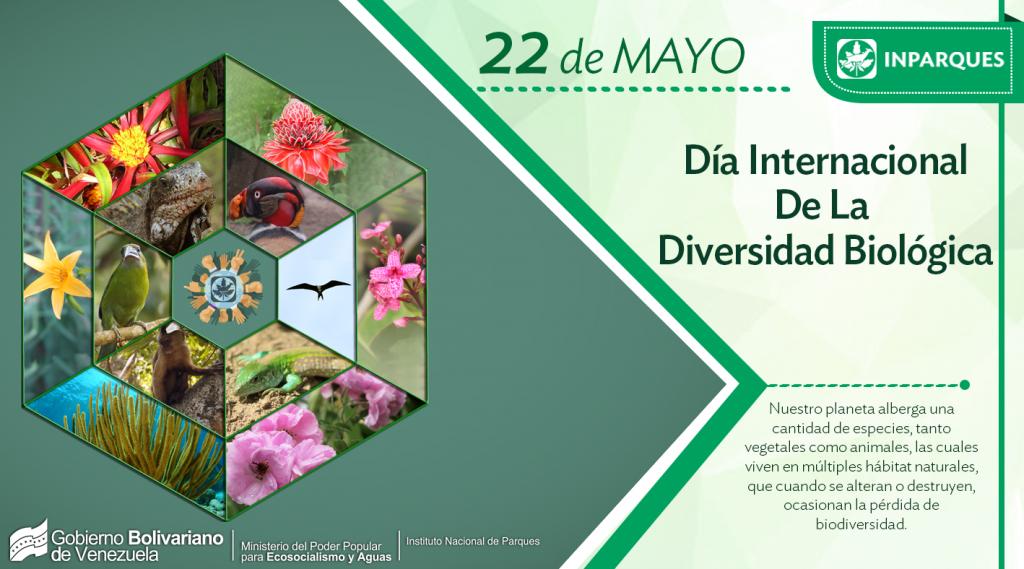 Día Internacional de la Diversidad Biológica, 25 años de lucha