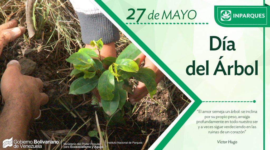 Día Nacional del Árbol: proveedor de vida en el planeta