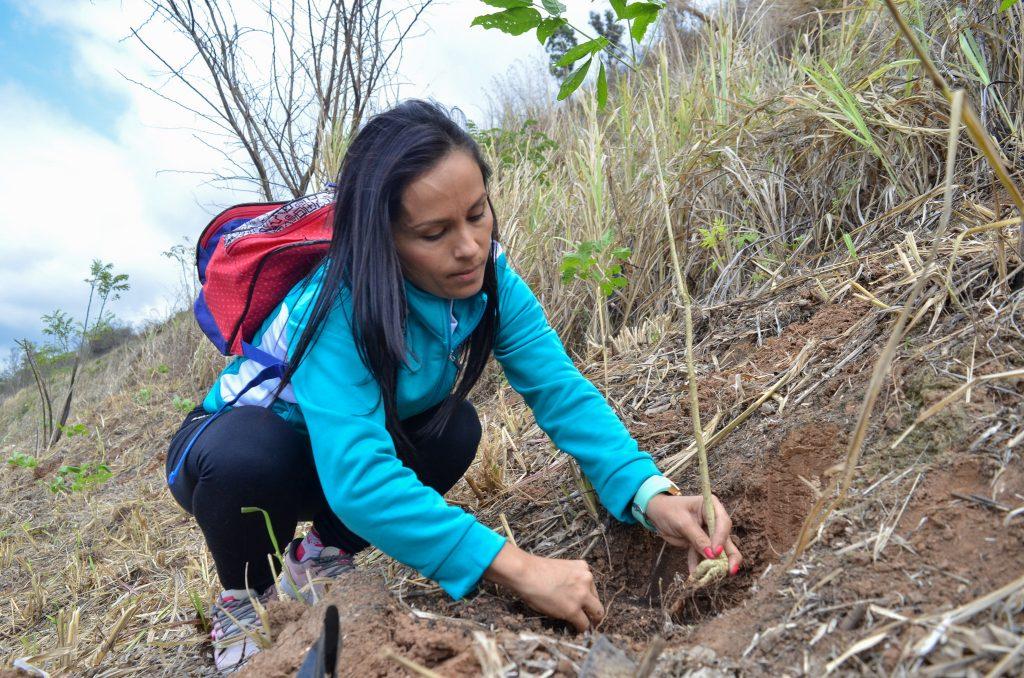 Comando de Mujeres Ecosocialistas plantó 500 árboles en el WarairaRepano