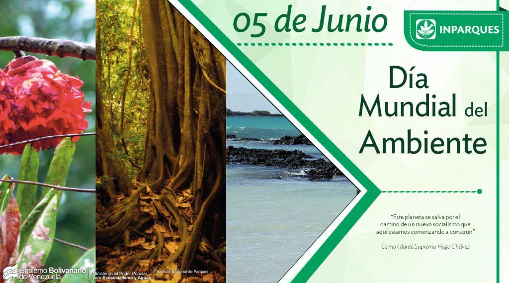 Día Mundial del Ambiente: armonía entre el  Hombre y la Naturaleza