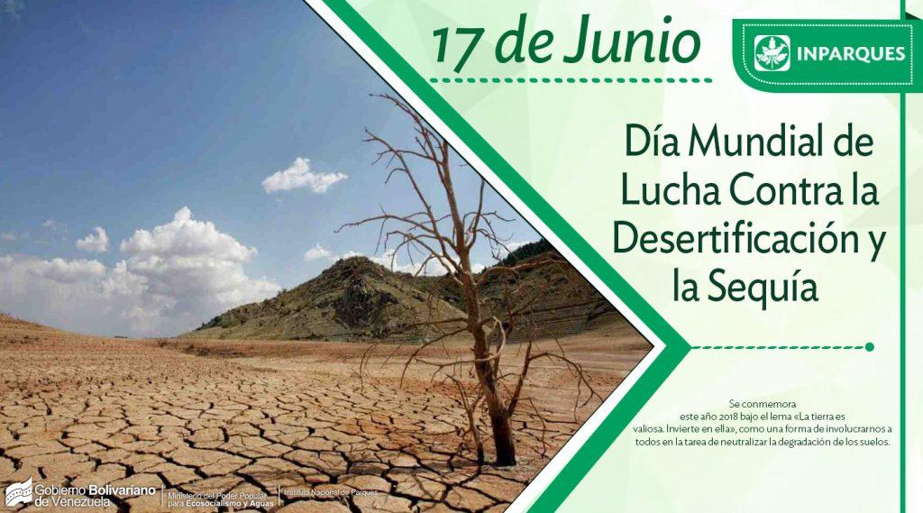 Día Mundial de Lucha contra la Desertificación y la Sequía: Proceso que afecta a la tierra