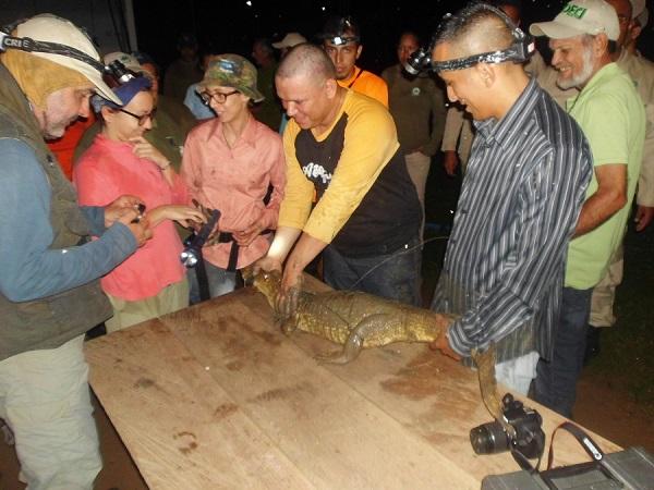 Inparques participó en la once edición del Curso Ecología y Conservación de los Crocodylia de Venezuela