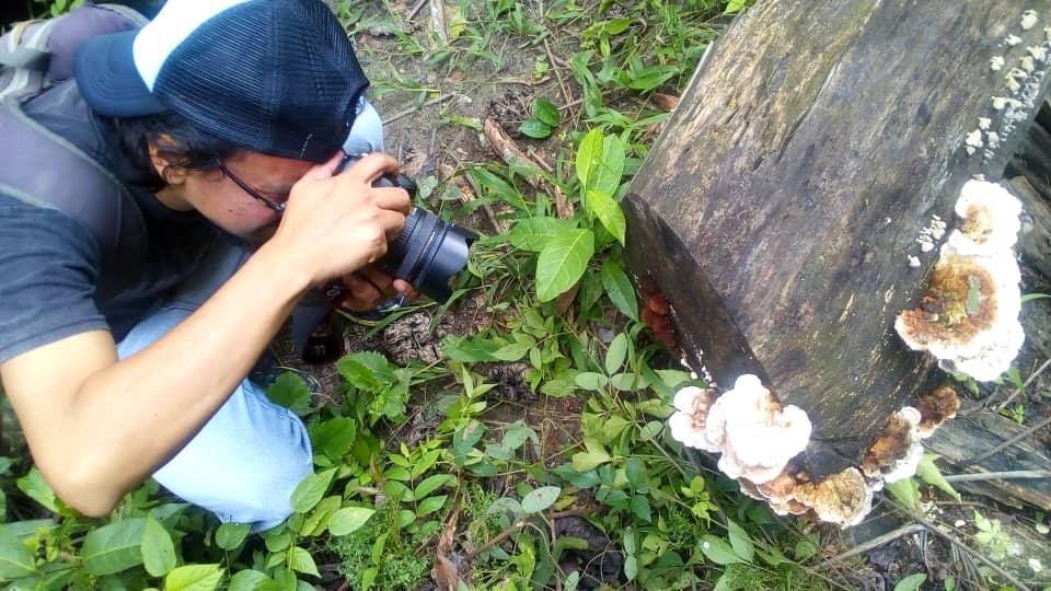 Inparques Yaracuy acompañó a estudiantes de la UNEY en prácticas fotográficas