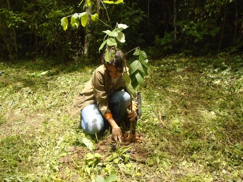 Inparques  recuperó espacios deforestados en el Parque Nacional Terepaima de Lara