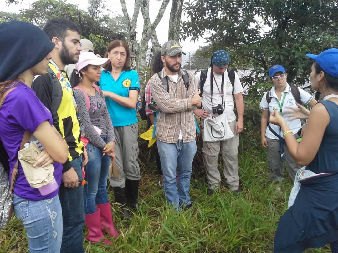Grupo Venezolano de Liquenólogos realizó muestreo de líquenes en el Monumento Natural Abra de Río Frío