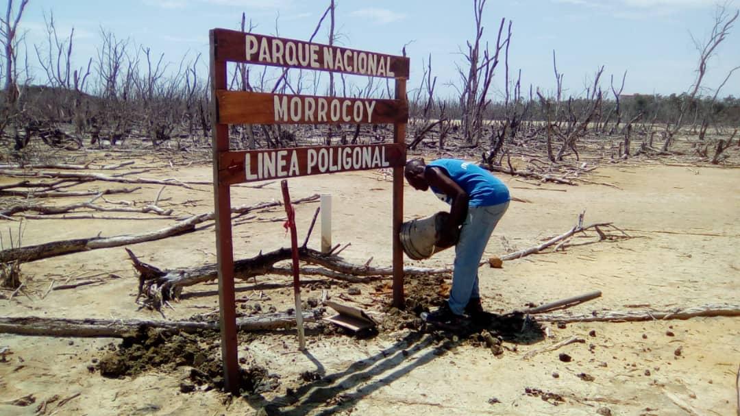 Inparques Falcón celebró Día de la Defensa del Ecosistema Manglar