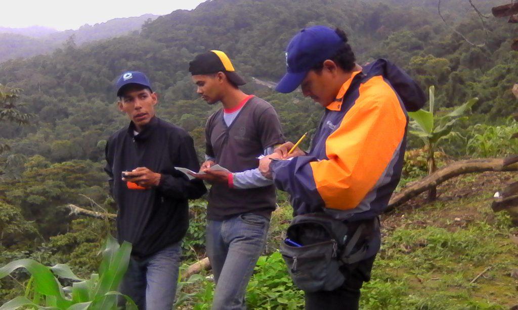 Inparques Lara desplegó equipo para combatir la deforestación del Parque Nacional Yacambú
