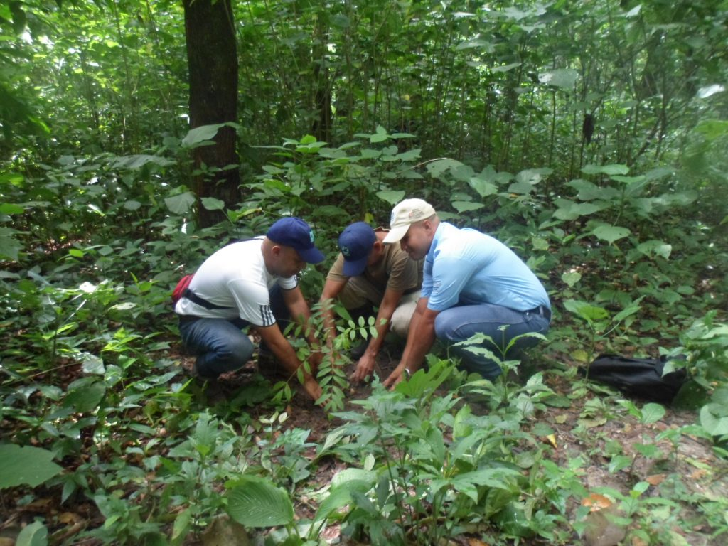 Doscientos veinte mil  kilogramos de desechos sólidos fueron recolectados en el Monumento Natural Cerro María Lionza