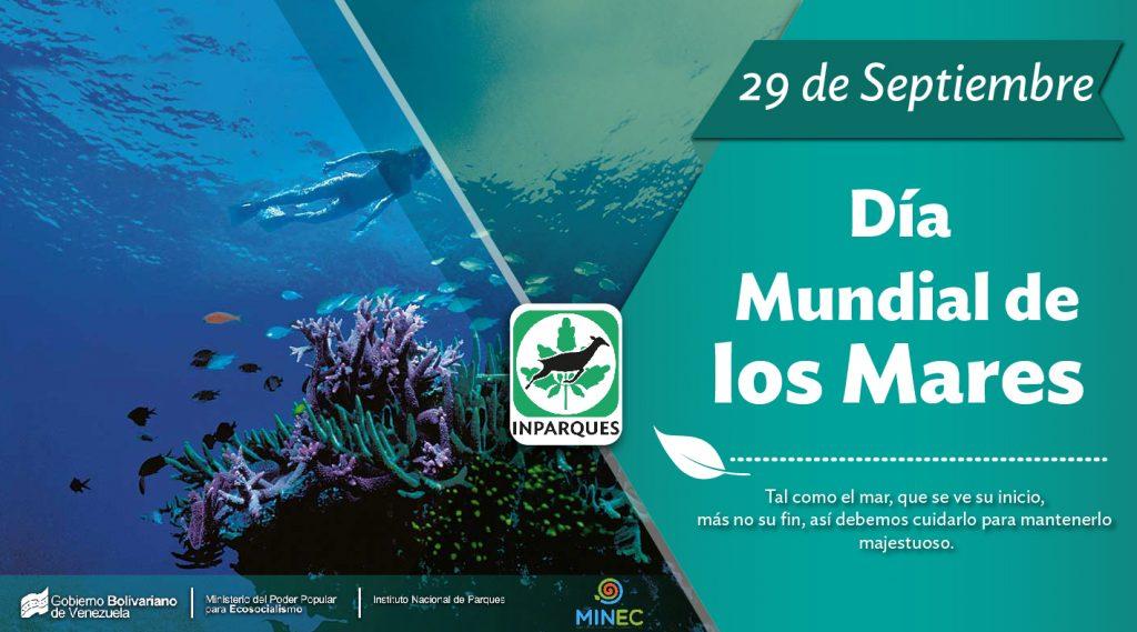 Día Mundial de los Mares: enorme riqueza dentro del ecosistema