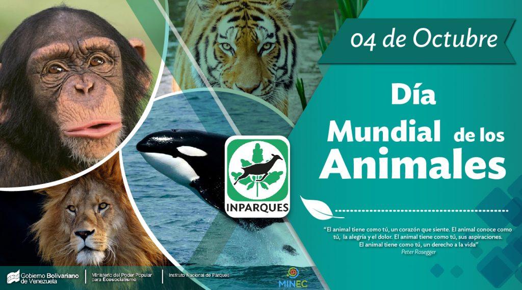 El Día Mundial de los Animales promueve la atención a las especies en peligro