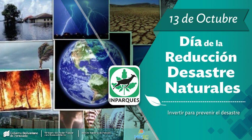 Día Internacional para la Reducción de Desastres: Reducir las pérdidas económicas en los desastres