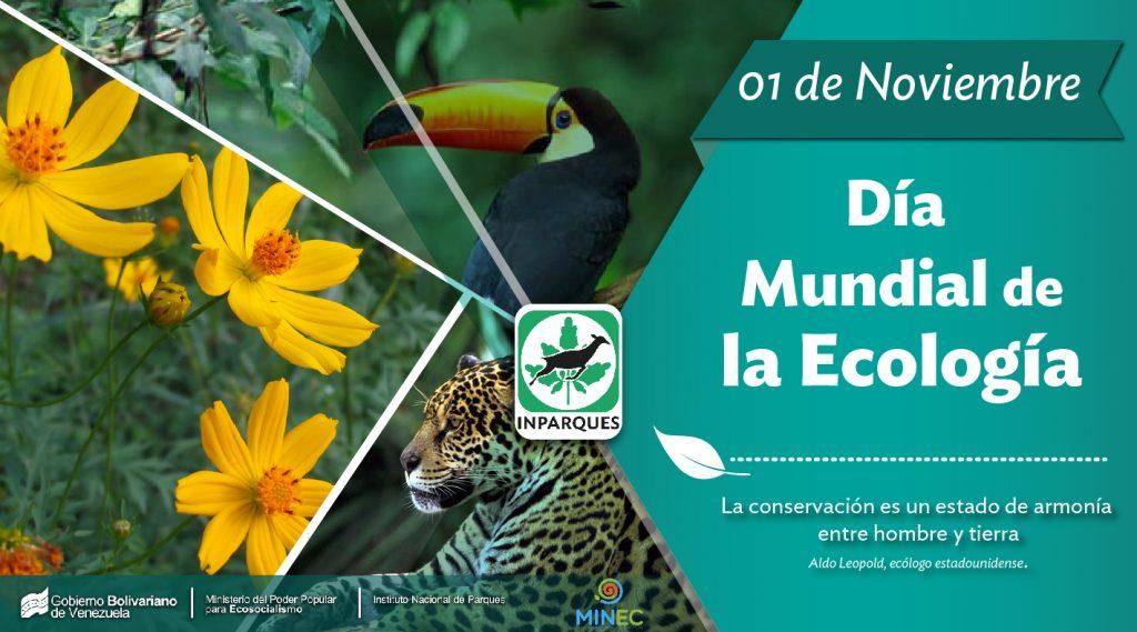 Día Mundial de la Ecología, por una relación más armoniosa entre seres vivos y su entorno