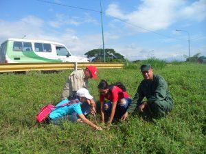 Jornada de arborización se realizó en la autopista Cimarrón Andresote