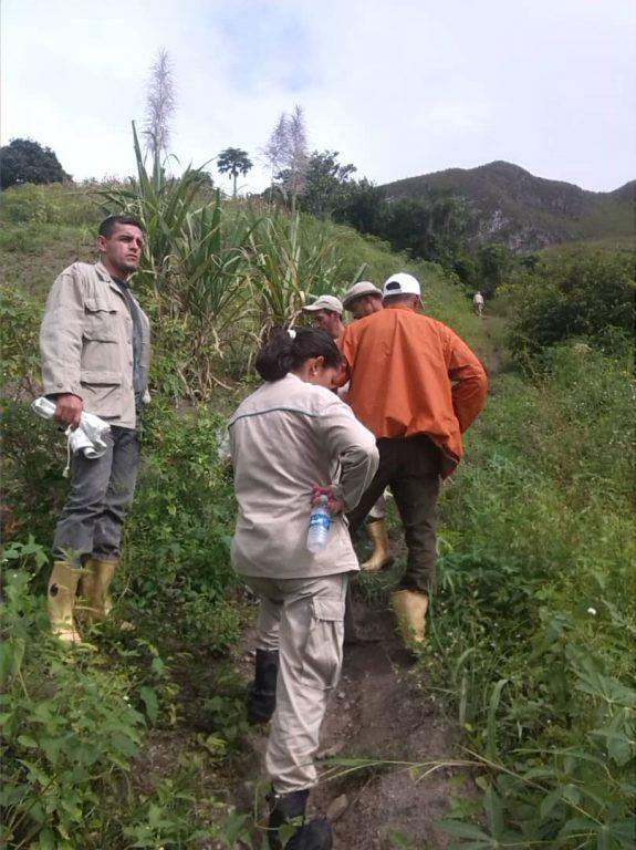 Inparques reforestó en el Monumento Natural Alejandro de Humboldt
