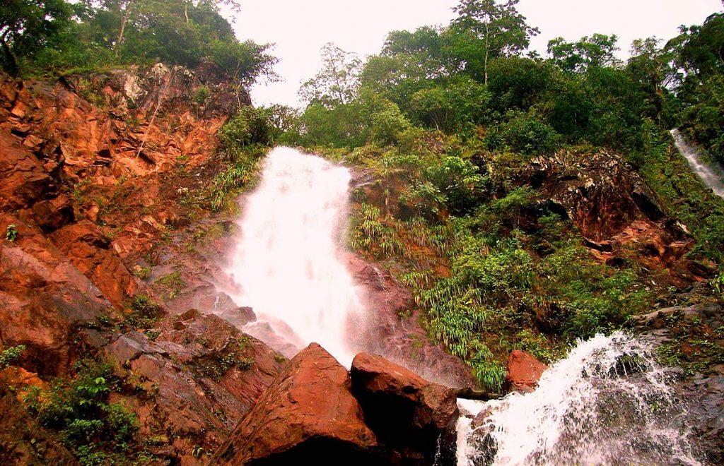 Parque Nacional Chorro El Indio celebra 29 años como espacio protegido
