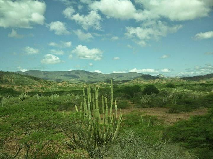 Inparques celebra los 29 años del Parque Nacional Cerro Saroche