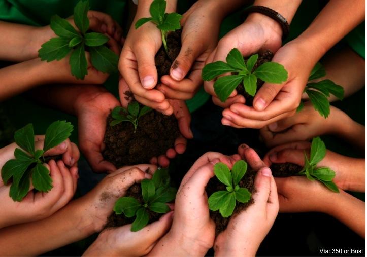 Programa de las Naciones Unidas para el Ambiente: por un ecologismo racional