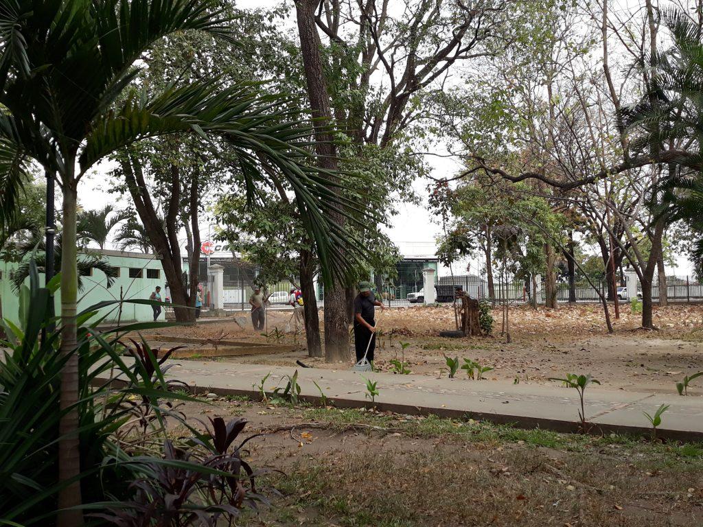 Inician plan de limpieza y ornato en el  Parque de Recreación  La Federación