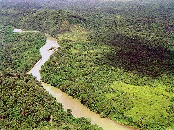 Inparques celebra 26 años de protección al Parque Nacional Tapo Caparo