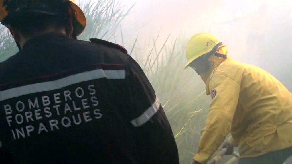 Bomberos forestales de Lara combatieron incendio en el Parque Nacional Dinira