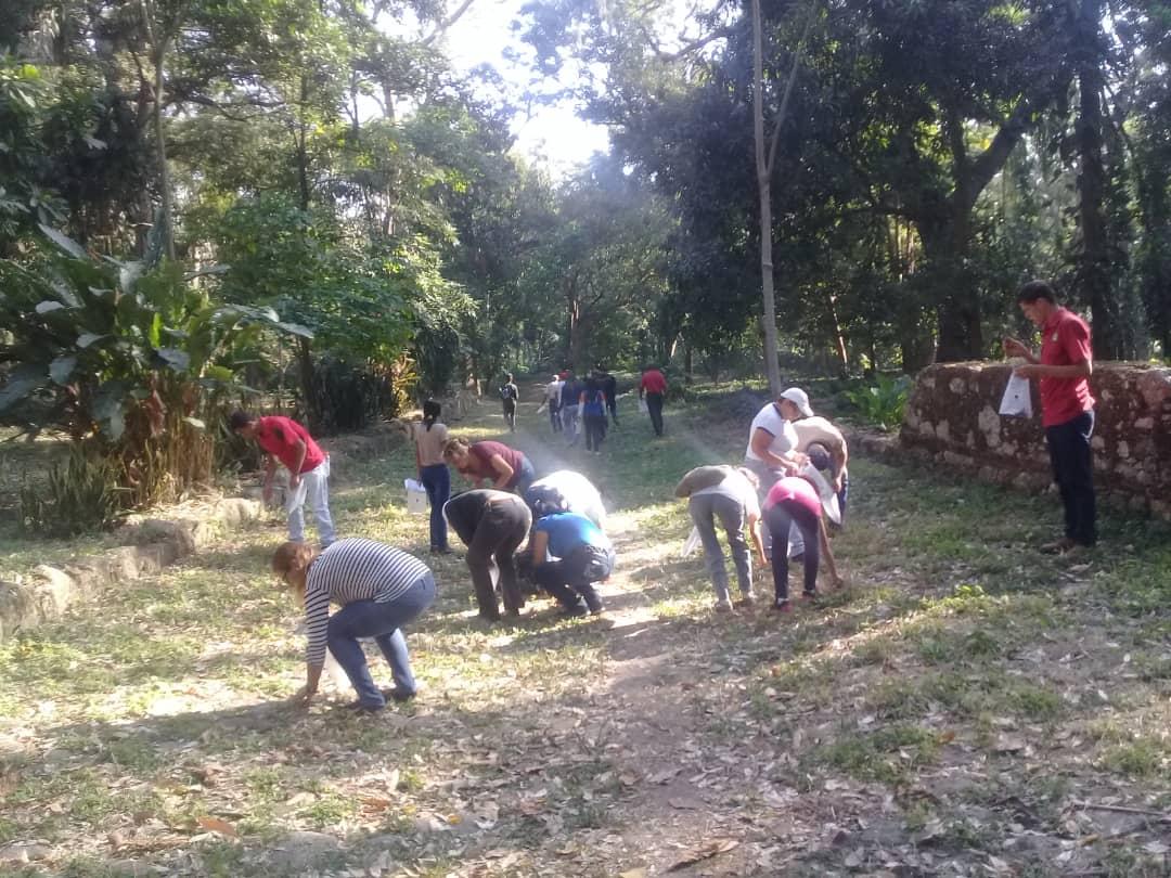 Parque San Felipe el Fuerte recibió jornada de recolección de semillas