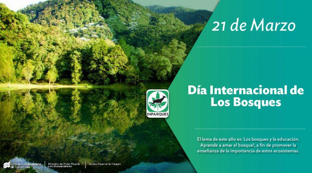 Día Internacional de los Bosques: Por mas ciudades verdes para las generaciones presentes y futuras
