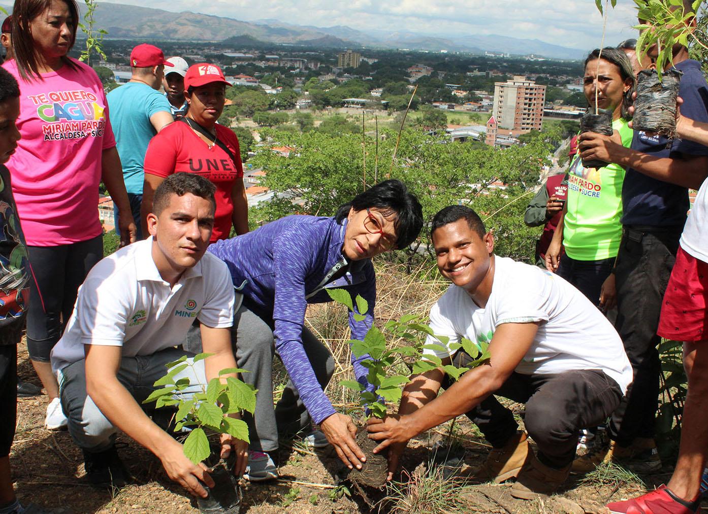 Más de 5 mil árboles fueron plantados en el Día del Árbol en Aragua