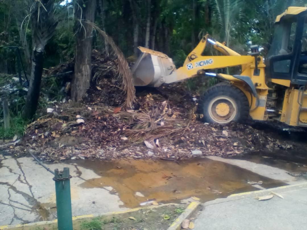 Grupos del Parque Generalísimo Francisco de Miranda contribuirán a su mantenimiento