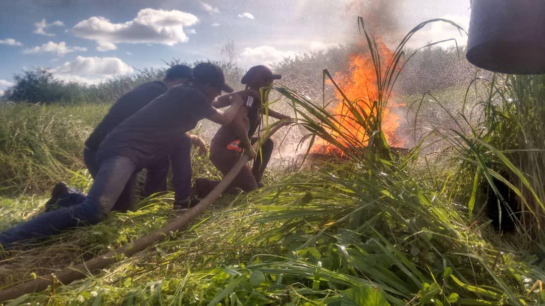 Aspirantes a guardaparques y combatientes forestales de Apure practican primeros auxilios