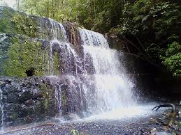 El Parque Nacional Yacambú está de cumpleaños